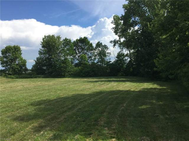 Adams, Vermilion, OH 44089 (MLS #4200258) :: The Holden Agency