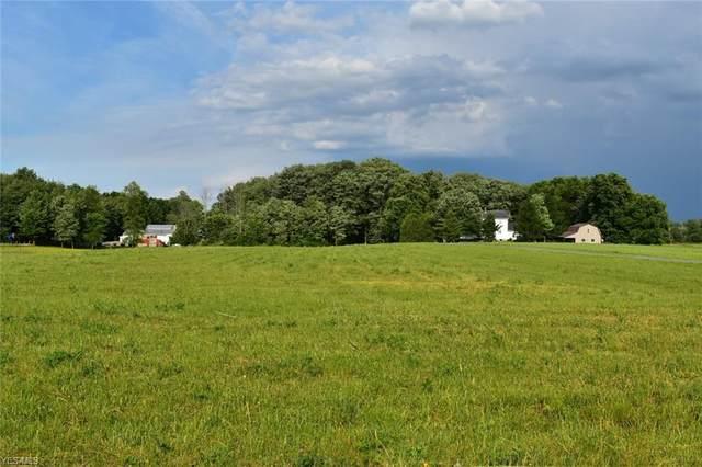 VL Cox, Windsor, OH 44099 (MLS #4200370) :: The Art of Real Estate