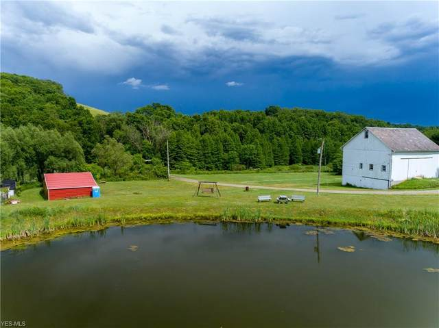 10901 State Route 164, Lisbon, OH 44432 (MLS #4200619) :: The Holden Agency