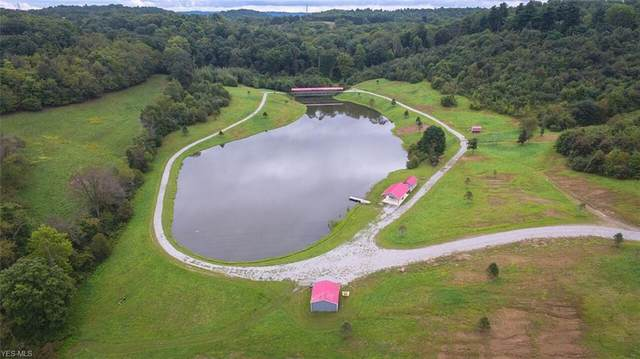 6141 Beagle Club Road, Newcomerstown, OH 43832 (MLS #4201170) :: The Crockett Team, Howard Hanna