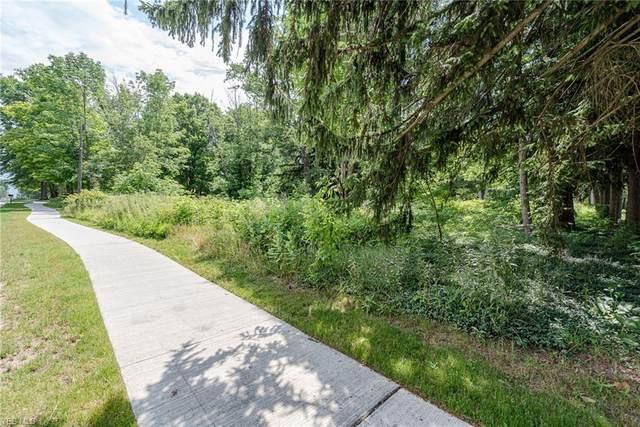 Lander Road, Orange, OH 44022 (MLS #4201850) :: RE/MAX Valley Real Estate