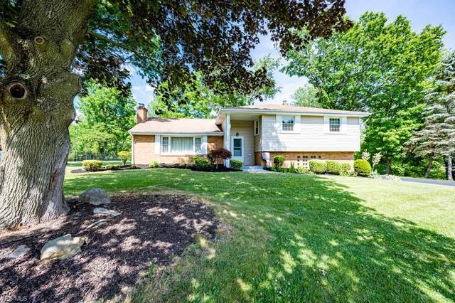 291 Glenview Road, Canfield, OH 44406 (MLS #4202592) :: Tammy Grogan and Associates at Cutler Real Estate