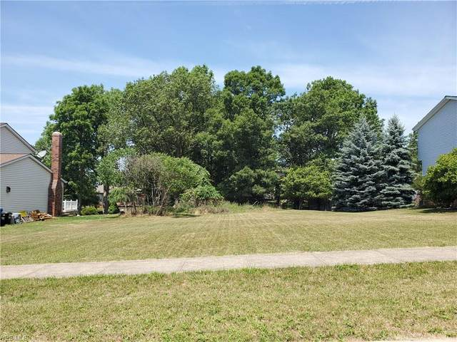 Clearwater Drive, Parma, OH 44134 (MLS #4202618) :: Tammy Grogan and Associates at Cutler Real Estate