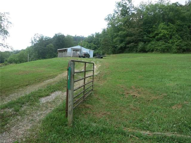5 Little Lynn Camp Road, Palestine, WV 26160 (MLS #4202879) :: The Crockett Team, Howard Hanna