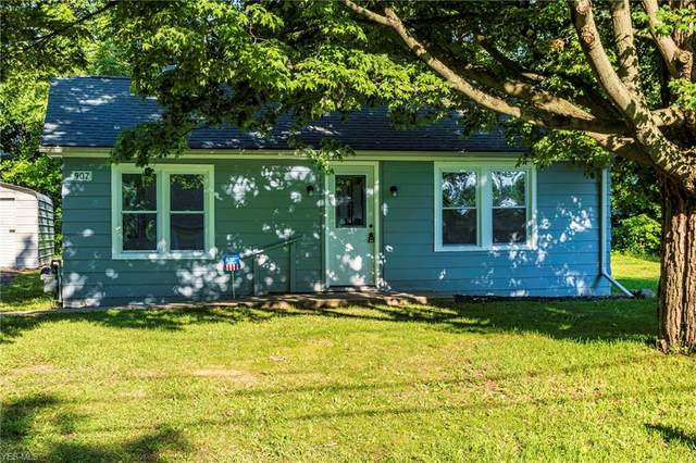 907 Robinhood Drive, Painesville, OH 44077 (MLS #4203042) :: The Holden Agency
