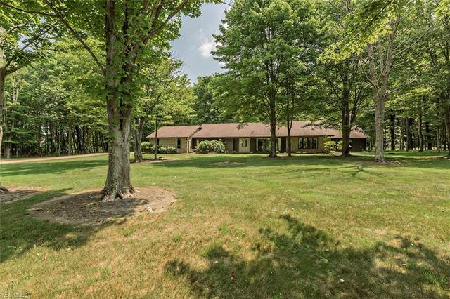 10235 Sawmill Drive, Chardon, OH 44024 (MLS #4203066) :: The Crockett Team, Howard Hanna
