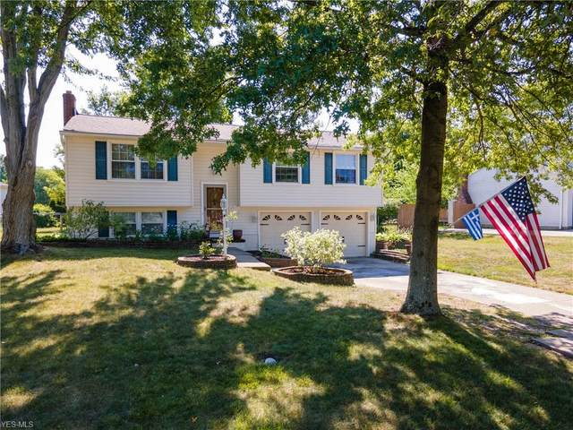 8289 Celianna Drive, Strongsville, OH 44149 (MLS #4203094) :: The Art of Real Estate