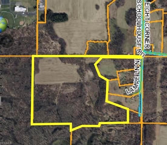 Lampe Lane NE, Magnolia, OH 44643 (MLS #4203273) :: Keller Williams Chervenic Realty