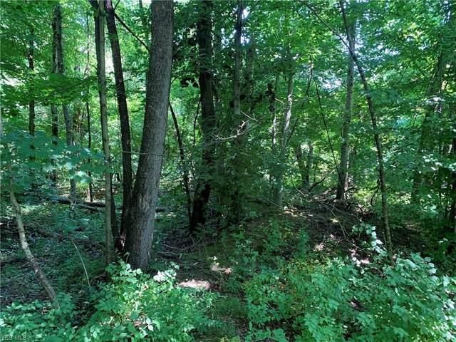 Connie, Steubenville, OH 43952 (MLS #4203281) :: Keller Williams Chervenic Realty