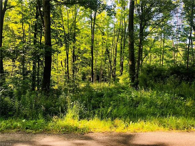 Allyn Road, Hiram, OH 44234 (MLS #4203320) :: Select Properties Realty