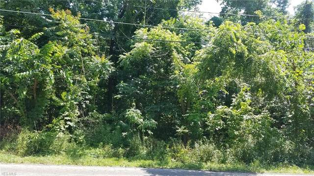 Lot 54 New Road, Austintown, OH 44515 (MLS #4204003) :: RE/MAX Valley Real Estate