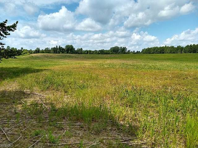 10163 Shaw Road, Spencer, OH 44275 (MLS #4204544) :: The Holden Agency