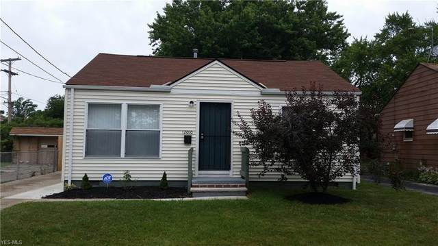12010 Mcgowan Avenue, Cleveland, OH 44135 (MLS #4204801) :: RE/MAX Edge Realty