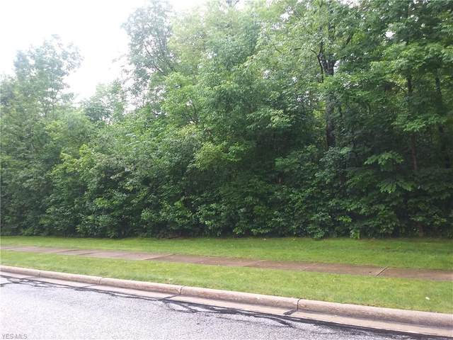 Flanders Drive, Solon, OH 44139 (MLS #4204829) :: The Holden Agency