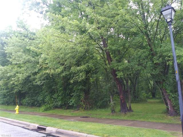 Flanders Drive, Solon, OH 44139 (MLS #4204831) :: The Holden Agency