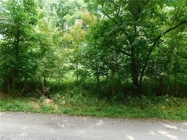 0 Olney Run Road, McConnelsville, OH 43756 (MLS #4205188) :: Keller Williams Chervenic Realty