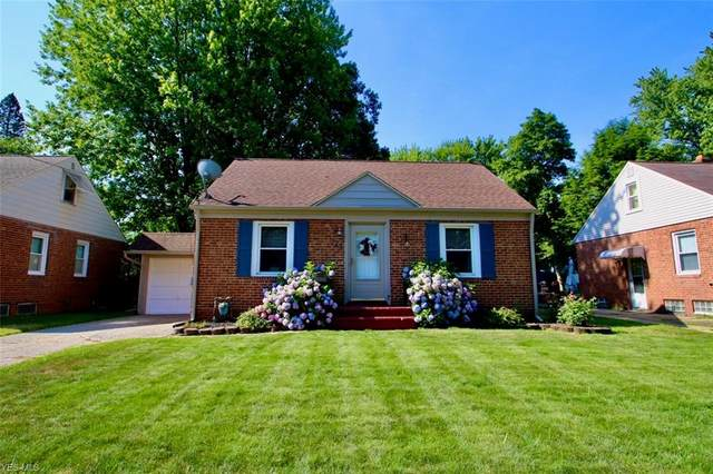 749 Lucille Avenue, Painesville, OH 44077 (MLS #4205727) :: The Art of Real Estate
