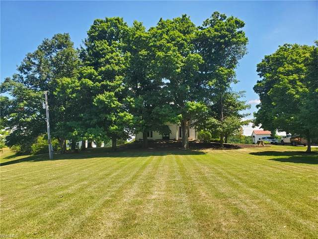 24111 State Route 58, Wellington, OH 44090 (MLS #4206728) :: Keller Williams Chervenic Realty