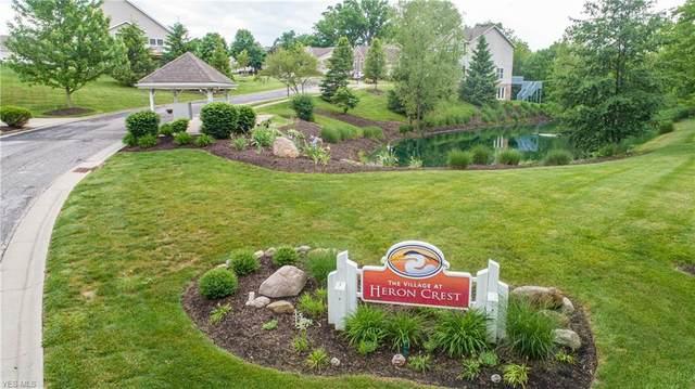 Heron Lakes Circle, Akron, OH 44203 (MLS #4206801) :: RE/MAX Edge Realty