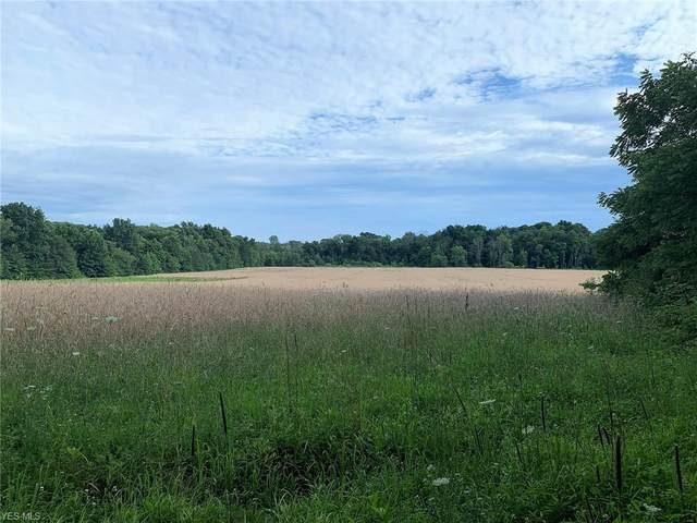 Sharon Copley Road, Wadsworth, OH 44281 (MLS #4206986) :: Select Properties Realty