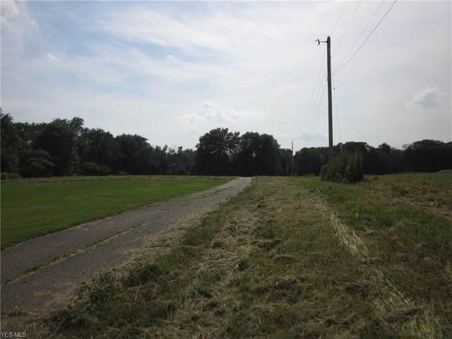 Lot 91 Limeridge Road, Ravenna, OH 44266 (MLS #4207076) :: Select Properties Realty