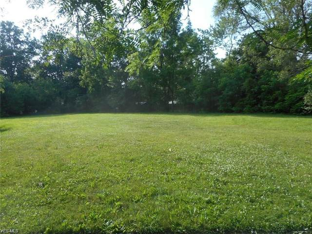 748 W River Road N, Elyria, OH 44035 (MLS #4207237) :: Select Properties Realty