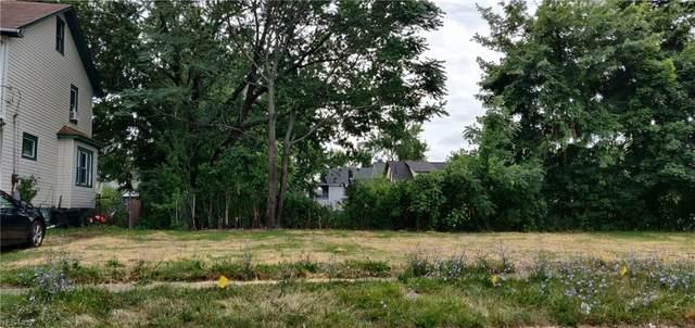333 W 25 Street, Lorain, OH 44052 (MLS #4209059) :: The Art of Real Estate