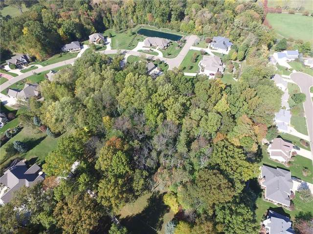 Hills And Dales Road NW, Canton, OH 44708 (MLS #4209248) :: Tammy Grogan and Associates at Cutler Real Estate