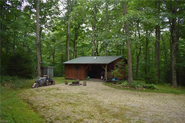 Pleasant Ridge Road, Alledonia, OH 43902 (MLS #4209292) :: Select Properties Realty