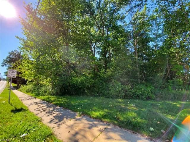 Park Avenue, Chardon, OH 44024 (MLS #4209438) :: The Art of Real Estate
