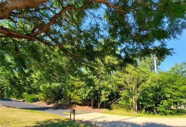 Center Street, Chardon, OH 44024 (MLS #4209443) :: The Art of Real Estate