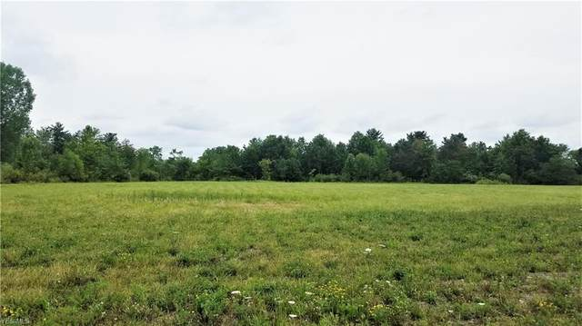 Center Road, Poland, OH 44514 (MLS #4210258) :: Select Properties Realty