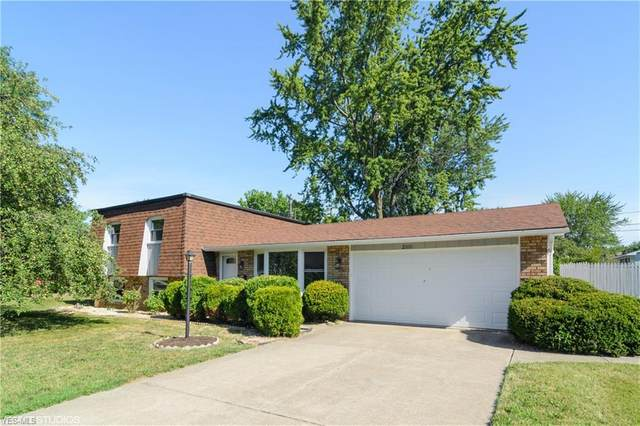 2100 W 40th Street, Lorain, OH 44053 (MLS #4210282) :: Tammy Grogan and Associates at Cutler Real Estate
