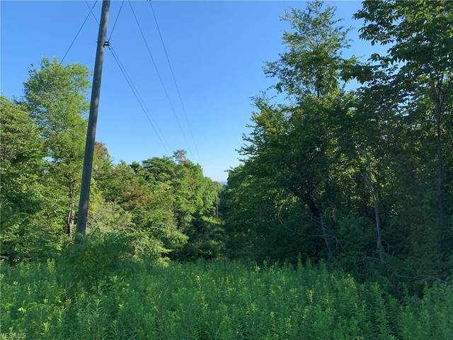 Darlington Road, Zanesville, OH 43701 (MLS #4210696) :: The Art of Real Estate