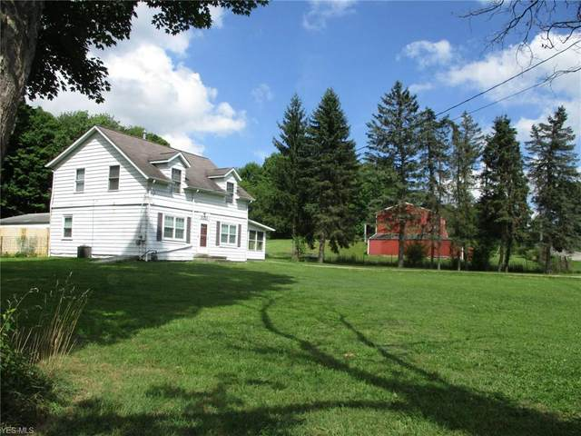 3213 State Route 303, Mantua, OH 44255 (MLS #4211124) :: The Jess Nader Team | RE/MAX Pathway