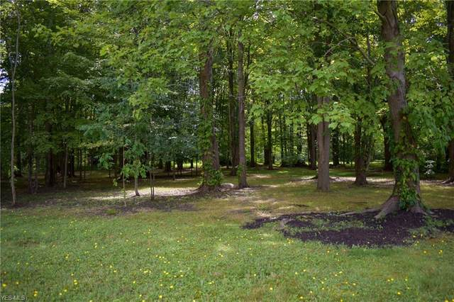 VL Jennings Drive, Painesville, OH 44077 (MLS #4211325) :: The Jess Nader Team | RE/MAX Pathway