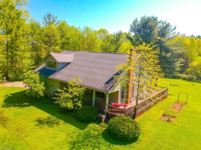 12544 Sheldon Road, Mantua, OH 44255 (MLS #4211454) :: The Art of Real Estate