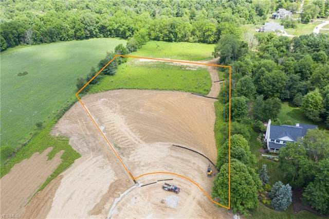 Crooked Stick Drive, Wadsworth, OH 44281 (MLS #4211885) :: Keller Williams Chervenic Realty
