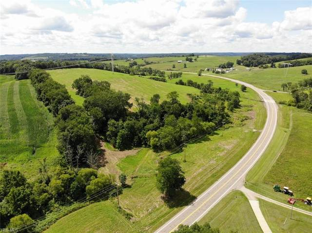 Frazeysburg Road, Dresden, OH 43821 (MLS #4212284) :: The Holly Ritchie Team