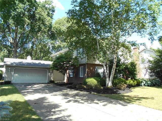 378 Summit Street, Wadsworth, OH 44281 (MLS #4212802) :: The Crockett Team, Howard Hanna