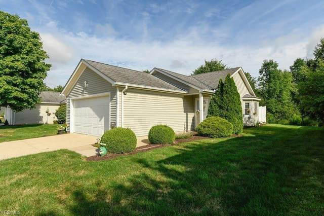 5291 Genny Drive, Medina, OH 44256 (MLS #4213736) :: The Art of Real Estate