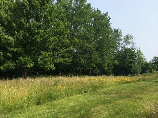 V/L Hunt Rd, Strongsville, OH 44136 (MLS #4214832) :: Keller Williams Chervenic Realty