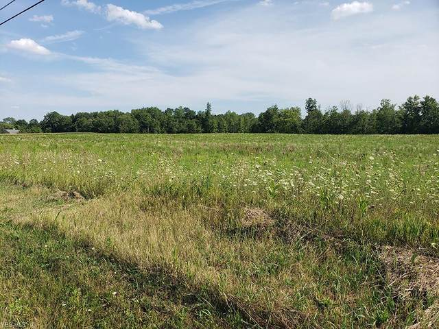 S/L 3 Sanford Road, Lodi, OH 44254 (MLS #4215344) :: Tammy Grogan and Associates at Cutler Real Estate