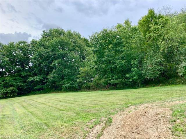 1082 Overlook Lane NE, Carrollton, OH 44615 (MLS #4215384) :: TG Real Estate