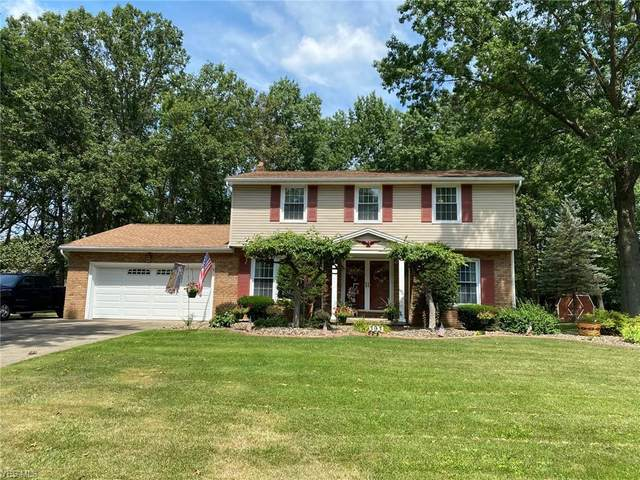 393 S Briarcliff Drive, Canfield, OH 44406 (MLS #4215441) :: The Jess Nader Team   RE/MAX Pathway