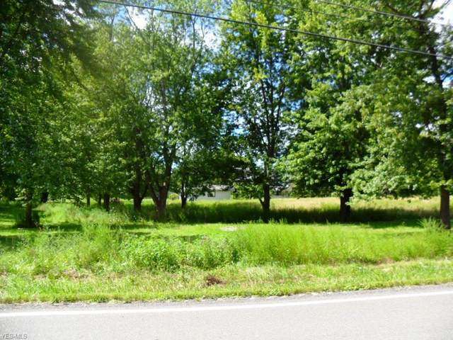 Chamberlain Road, Mantua, OH 44202 (MLS #4216160) :: Krch Realty