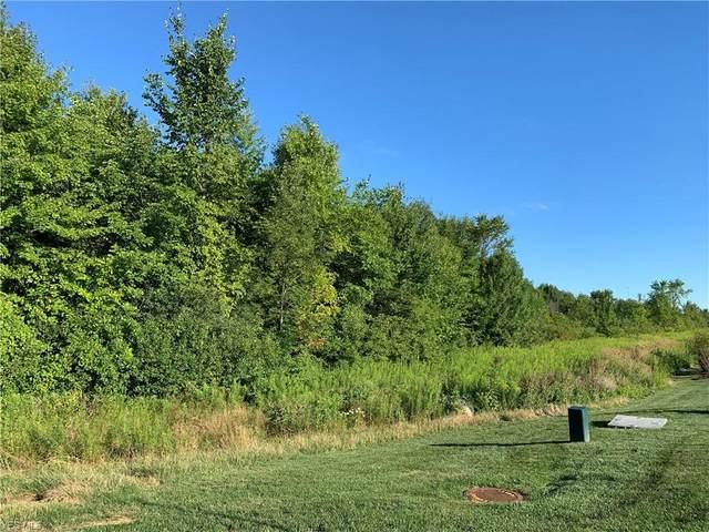V/L Avon, Avon, OH 44011 (MLS #4216441) :: Select Properties Realty