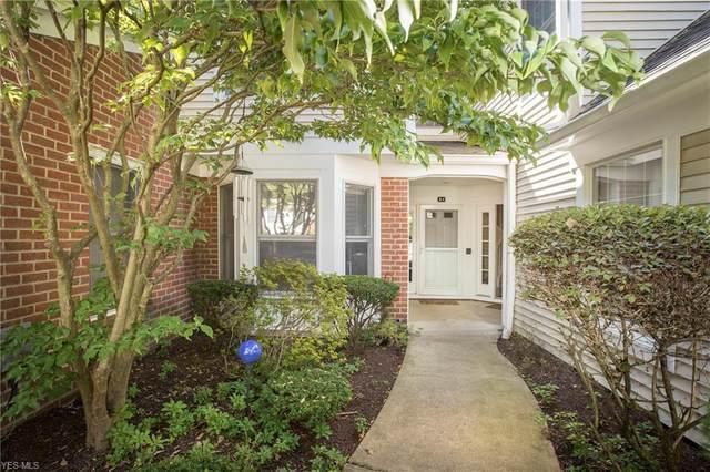 844 Hamlet Lane A1, Westlake, OH 44145 (MLS #4217600) :: RE/MAX Valley Real Estate