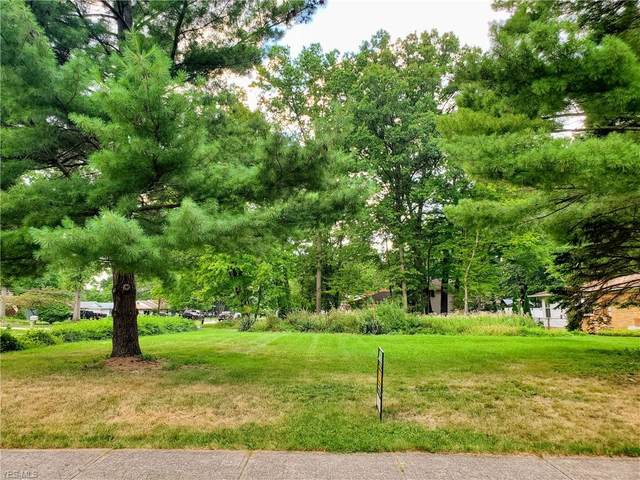 Fairtree Avenue, Strongsville, OH 44149 (MLS #4219981) :: The Art of Real Estate