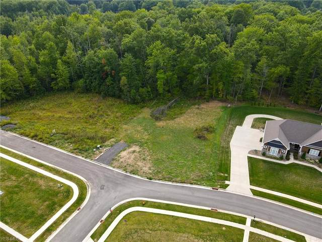 Ridgely Court, Poland, OH 44514 (MLS #4220488) :: The Jess Nader Team | RE/MAX Pathway